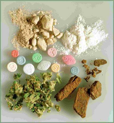 drug effects on body Quotes